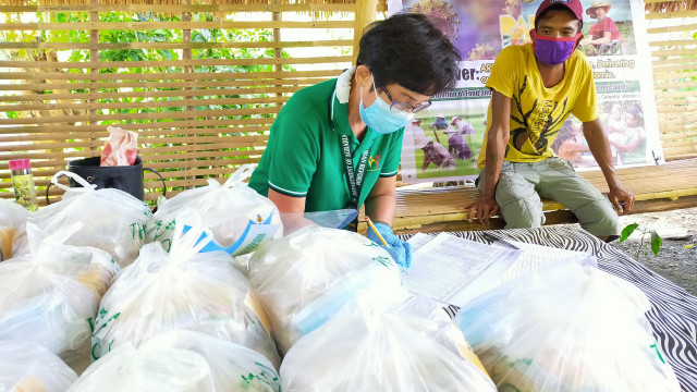 Mindoro Farmers Receive Relief Packs from DAR