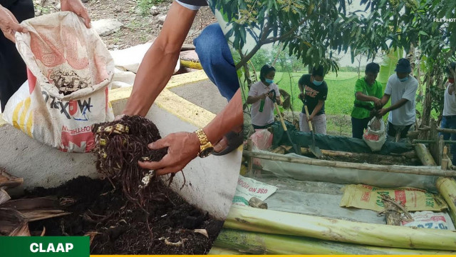 Organic farming gains ground in Pangasinan