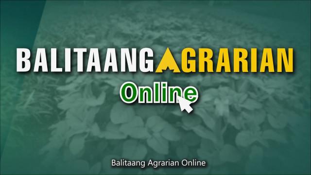Balitaang Agrarian Online 8.