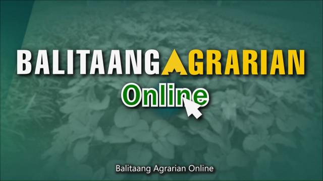 Balitaang Agrarian Online 10.