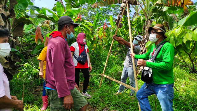 DAR Davao del Norte partners with DA XI in Banana Production for ARBs