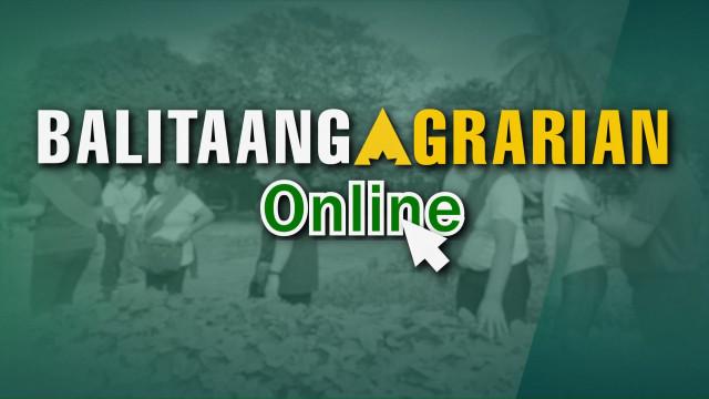 Balitaang Agrarian Online 17.