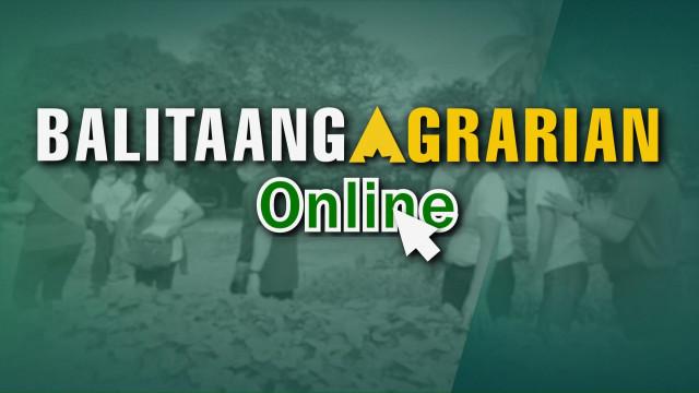 Balitaang Agrarian Online 20.